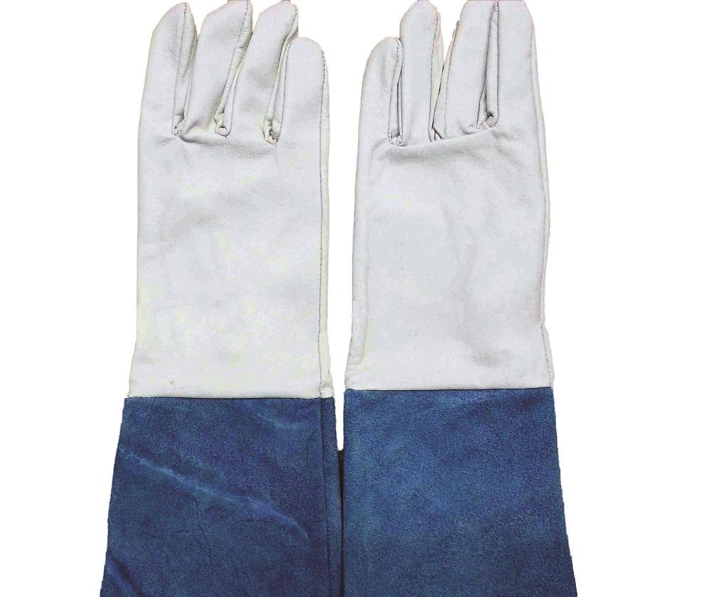 Găng tay Hàn Việt Nam dài